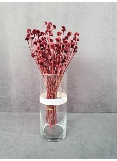 Kuru Çiçek Deposu Kuru Çiçek Papatya Otu 50 Cm Koyu Mor  Pembe